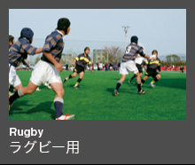 Rugby ラグビー用